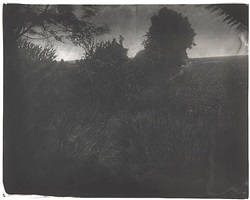untitled [antietam # 8] by sally mann